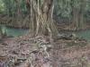 riviere-indienne-2-dominique